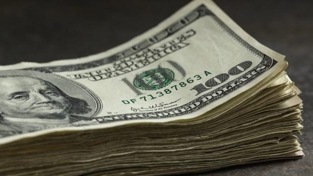 Dolar 2 haftanın zirvesinde